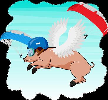 Flying, Pig, Paragliding