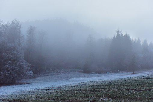 Wintry, Cold, Winter, Black Forest, Landscape, Ice