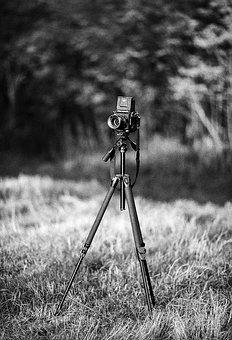 Camera, Mamiya, Tripod, Photography, Photo, Field