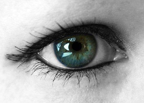 Eye, Eyelashes, Green, Make Up, Iris, Lid, Woman