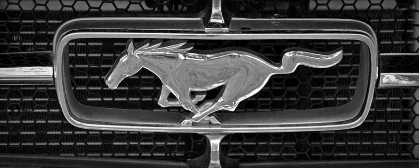 Brand, Ford, Mustang, Symbol, Characters, Feature