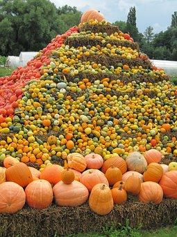 Thanksgiving, Pumpkin Soup, Pumpkin, Frisch, Healthy