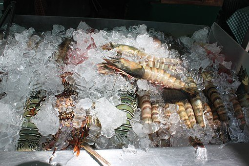 Shrimp, Food, Seafood, Republic Of The Philippines