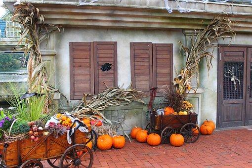 Halloween, Decoration, Pumpkins, Straw