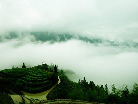 Guilin, Dragon's Back, Terrace, Foggy Road, Autumn