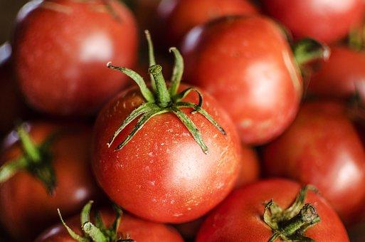 Tomato, Tomatoes, Vine, Food, Red, Fresh, Vegetable