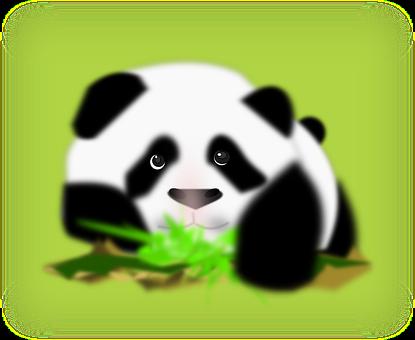 Panda, Bear, Back, White, Face, Wildlife, Chinese