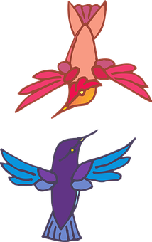 Two, Birds, Flying, Colors, Wings, Hummingbirds, Fly