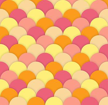 Scallops, Background, Texture, Square