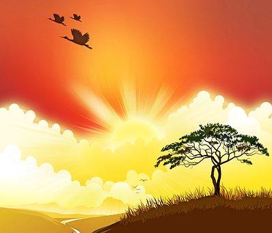 Savannah Sunset, Ducks, Sunset, Africa, Tree