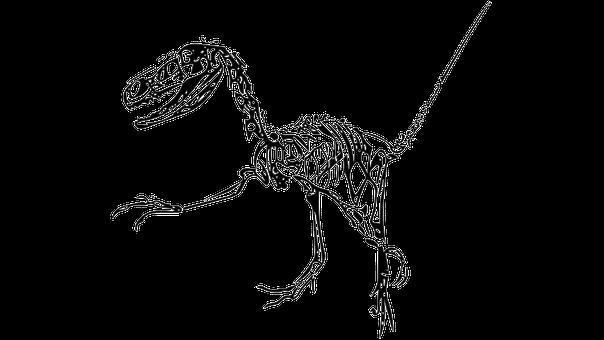 Dinosaur, Fossil, Fukui City
