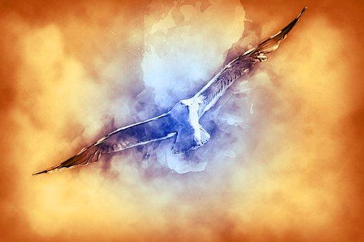 Seagull, Bird, Flying, Flight, Art, Artistic, Gull