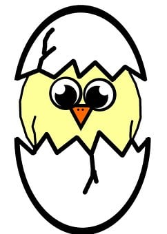 Hatching, Easter, Chicken, Chick, Spring, Egg, Cracked