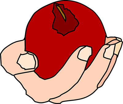 Apple, Red, Food, Fruit, Hand, Plant, Holding
