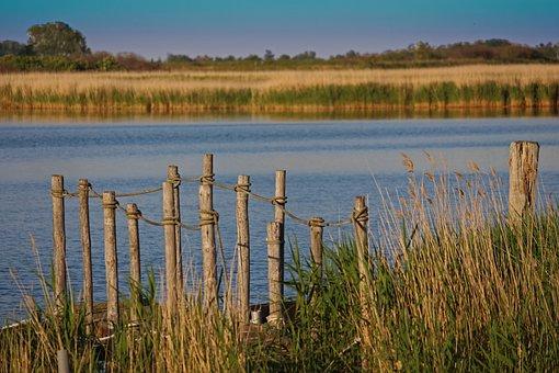 Nature, Web, Water, Mood, Lake, Atmosphere, Waters