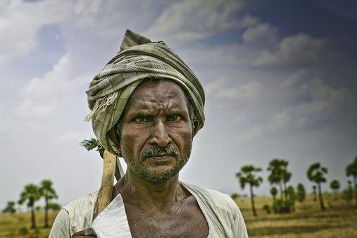 Farmer, India, Mohan, Nannapaneni, Worker, People