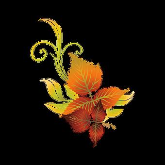 Autumn, Sheet, Leaves, Colorful, Season, Fall Colors