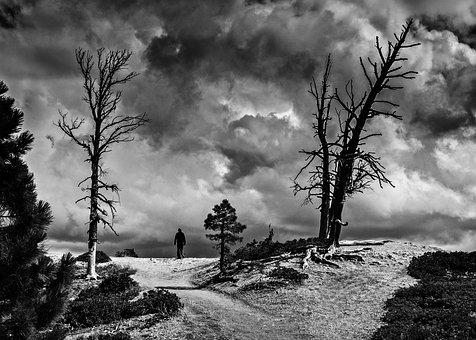 Landscape, Stormy, Sky, Nature, Dramatic, Light