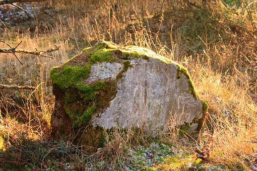 Stone, Moss, Old, Landscape