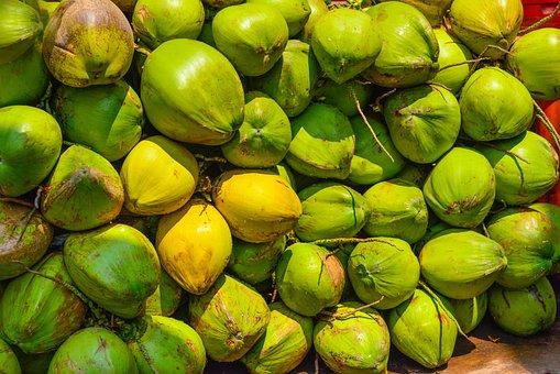 Coconut, Green, Fresh, Tropical, Mohan, Nannapaneni