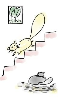 Cat, Lovely, Picture, Stair, Cute, Happy, Cheerful