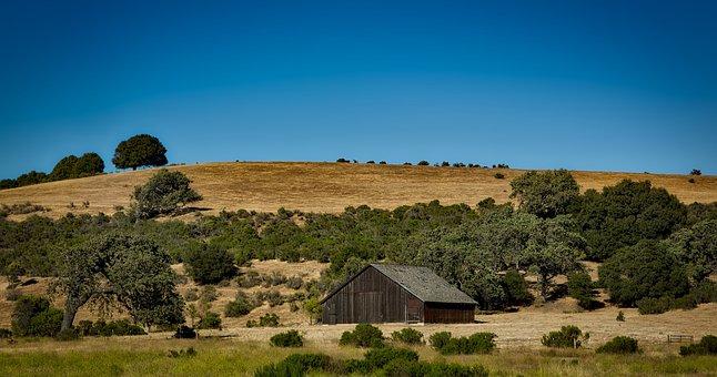 California, Countryside, Rural, Farm, Ranch, Landscape
