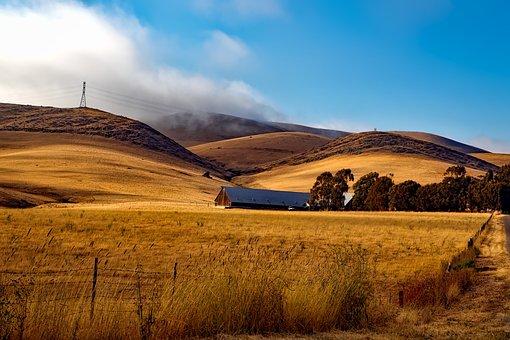 Farm, Ranch, California, Hills, Valley, Idyllic