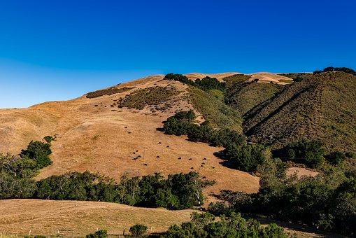 California, Landscape, Scenic, Mountains, Hills, Rural