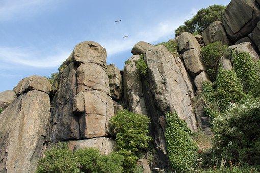Cliffs, Mountain, Precipices, Nature, Plants, Birds