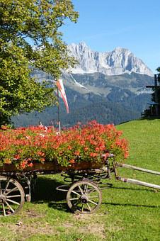 Cart, Floral Decorations, Wilderkaiser, Romantic