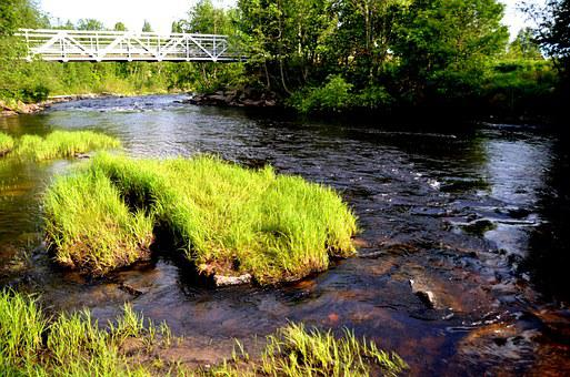 Sweden, Summer, Water Courses, River, Water, Channel