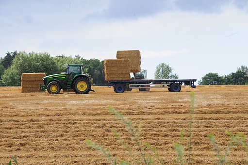 Tractor, Agriculture, Tractors, Working Machine, Straw