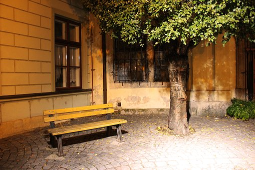 Bench, Tree, Background, Foliage, Green, Natural