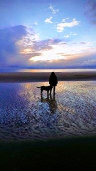 Ameland, Beach, Sunset, Dog, Watts