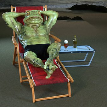 Frog, Beer, Glass, Vacations, Beach, Beverages