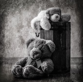 Plush, Toy, Childhood, Bear Cub, Picture, Teddy Bear