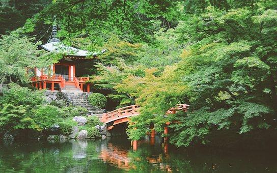 Asia, Japan, Temple, Bridge, Garden, Green, Oriental