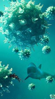 Shark, Blood, Underwater, Virus, Warning