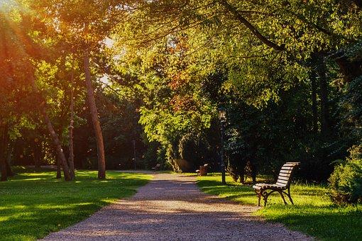 Park, Bank, Park Bench, Seat, Rest, Click, Sit, Nature