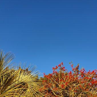 Sky, Blue, Nature, Background, Landscape