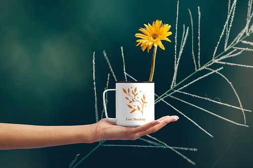 Flower Cup Mockup, Background, Cup
