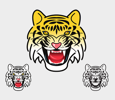 Tiger, Wild Animal, Head, Face, Angry
