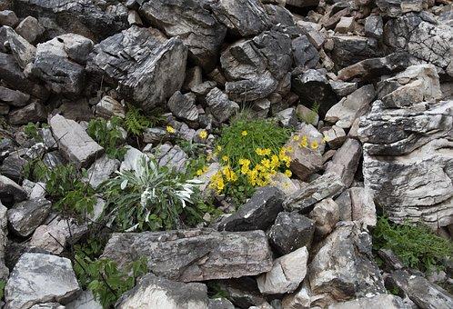 Mountain, Rocks, Nature, Wild, Landscape, Hiking