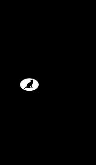 Cat, Kittens, Feline, Silhouette
