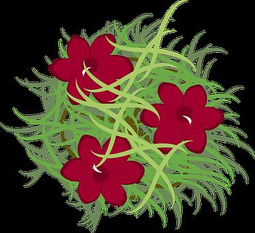 Oleander, Bush, Bloom, Blossom, Flora