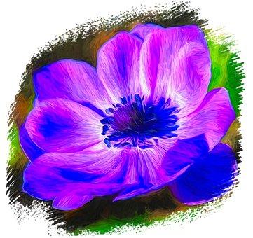 Flower, Floral, Decorative, Flora