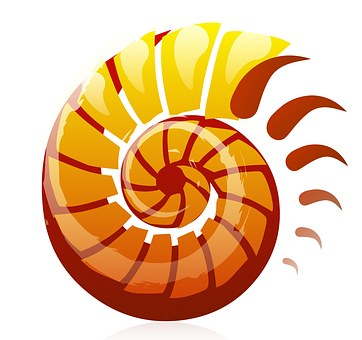Shell, Logo, Design, Abstract, Creative