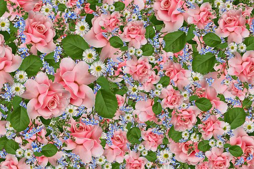 Flowery, Background Floral, Flowers, Spring, Floral