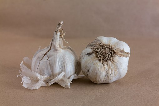 Garlic, Vegetable, Food, Organic