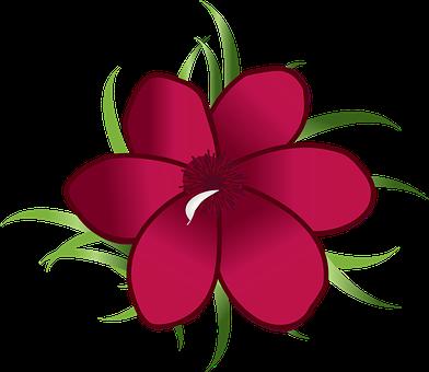 Oleander, Flower, Bloom, Blossom, Nature